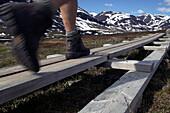 Hiking the Kungsleden Trail, Abisko, Abisko National Park, Norrbotten County, Lappland Province, Sweden
