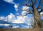 Walker and guide on walking safari, Selous Game Reserve, Tanzania