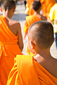 Young monks in orange robes, Rear View, Bangkok, Thailand