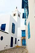 White and blue buildings, Sidi Bou Said, Tunisia