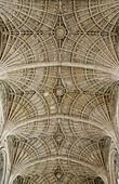 Ceiling of King's College Chapel, Cambridge, England, UK