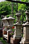 Italy, Veneto, Venice, Torcello, garden