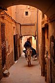 Algeria, Mzab, El ATeuf, man on donkey