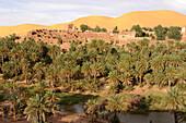 Algeria, Sahara, Grand Erg Occidental, Taghit