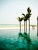 Infinity Pool and Palm Trees on Beach