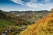 Munstertal in Autumn, near Freiburg im Breisgau, Black Forest, Baden-Wurttemberg, Germany