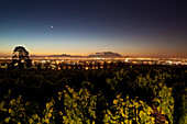 View onto vineyards of the winery Saxenburg towards Table Mountain at dusk, Stellenbosch, Western Cape, South Africa