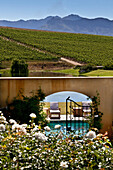 Swimming Pool at  the Asara Wine Estate, Stellenbosch, Western Cape, South Africa
