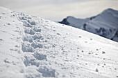 Tracks in the deep powder snow, See, Tyrol, Austria