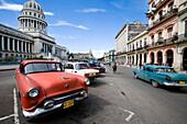 Old American cars parked in street, Havana, Cuba