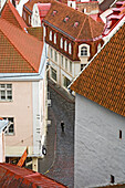 A solitary figure walking the cobbled streets of Tallinn, Aerial View, Estonia