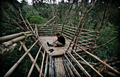 Man using a laptop in a remote tribal village on bamboo tree top canopy platform in forest, Mawlynnong, East Khasi Hills, Meghalaya, North East States, India