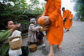 Novice monks out collecting alms at dawn, Luang Prabang, Northern Laos (UNESCO World Heritage Site)