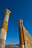 Capitol in ancient Roman city, Volubilis, Morocco