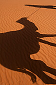 Shadow of Berber 'Blue man' leading camel across sand dunes, Erg Chebbi area of the Sahara Desert near Merzouga, Morocco, Merzouga, Morocco.