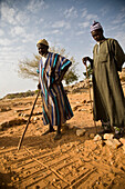 Fortune tellers reading from footprints made by foxes overnight, Bandiagara Escarpment, Dogon Country, Mali