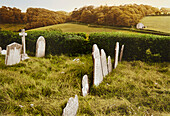 Tombstones on a cemetery, near Dartmoor, Devon, Southern England, Great Britain, Europe