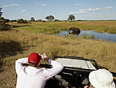 Two tourists on safari in a car looking at an elephant, Caprivi Strip, Namibia