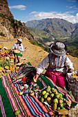 Handicraft and cactus fruit vendors at Colca Valley, Peru