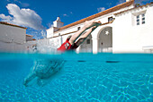 Man diving into swimming pool, split level, Andalusia, Spain