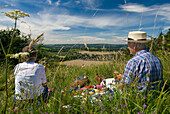 Couple having picnic in meadow on the South Downs as seen through wildflowers, West Sussex, England