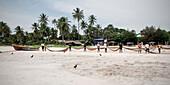 Group of fishermen folding their fishing net, Uppuvelli, Tamil provinces, Sri Lanka