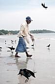 Old Tamil fisherman carries jellyfish back to sea, brids, Uppuveli, tamil province, Indian Ocean, Sri Lanka