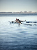 Rowing in Hobart harbour, Tasman Sea, Tasmania, Australia
