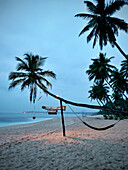 Crooked palm tree with hammock at Tangalle beach at dawn, Sri Lanka, Indian Ocean
