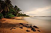 sunset at a bay around Mirissa beach, fishing boats between palm trees, Sri Lanka, Indian Ocean