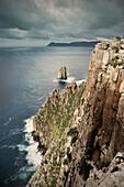 Rugged rocky coastline with cliffs at Cape Hauy, Tasman Peninsula, around Port Arthur, Tasmania, Australia
