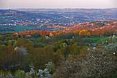 Blick vom Schaumberg Richtung Freisener Höhe mit Selbach am Abend, Windräder am Horizont, Saar-Nahe-Bergland, Saarland, Deutschland, Europa