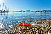Bottle message at lakeshore, lake Chiemsee, Gstadt, Chiemgau, Upper Bavaria, Germany