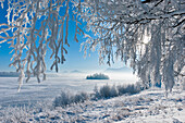 Winter scenery at lake Staffelsee with Muehlwoerth island, Uffing, Upper Bavaria, Germany