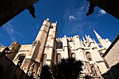 France, Languedoc-Roussillon, Aude Department, Narbonne, Cathedrale St-Just-et-St-Pasteur cathedral, exterior