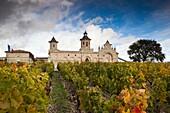 France, Aquitaine Region, Gironde Department, Haute-Medoc Area, St-Estephe, Chateau Cos d´Estournel winery
