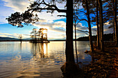 Evening, dusk, view, tree, mountain, trees, Cairngorms, highlands, highland, pine, Loch, Loch Mallachie, Mallachie, national park, park, panorama, Pinus sylvestris, reflection, silhouette, Scotland, Great Britain, Scots pine, lake, silhouette, sun, sundow