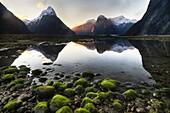 Mitre peak sunset, low tide revealing boulders covered in green algae, Milford Sound, Fiordland National Park