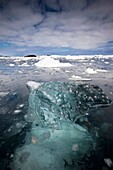 Hard, highly compressed translucent ice floats among brash ice, Penola Strait, Antarctic Peninsula.