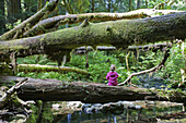 Young Girl Sitting on Moss Covered Tree Near Stream, Redwood National Park, California, USA