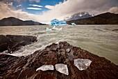Blue iceberg, rain squalls on Lago Grey, chunks of ice blown onto rocky foreshore, Parque Nacional Torres del Paine, Patagonia, Chile