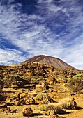 Mount Teide or, in Spanish, Pico del Teide Teide Peak, is the highest elevation in Spain and the islands of the Atlantic it is the third largest volcano in the world from its base, after Mauna Loa and Mauna Kea located in Hawaii  It is an active volcano w