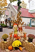 A fall public display of scarecrow, pumpkins, flowers and corn stalks in Branson, Missouri, USA