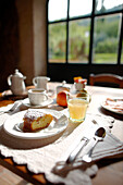 Breakfast table with cake and fruit juice, Agriturismo and vineyard Ca' Orologio, Venetia, Italy