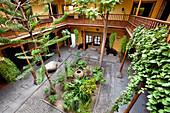 Innenhof mit Pflanzen im Casa de Colon in der Altstadt, Vegueta, Las Palmas, Gran Canaria, Kanarische Inseln, Spanien, Europa