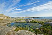 Rocky coast under clouded sky, Marstrand, Bohuslan, Vastra Gotalands lan, Sweden, Europe