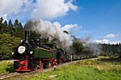 Jubilee train, steam railway, Brockenbahn, Harz, Saxony-Anhalt, Germany