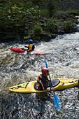 Kayaking on the Oker river, Oker Valley, Harz, Lower Saxony, Germany