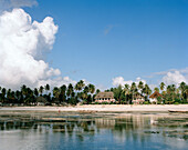 Beach of Blue Oyster Hotel during low tide, Jambiani village, Zanzibar, Tanzania, East Africa