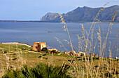 Tunafishharbour at monte Cofano, Monte Cofano, Trapani, Sicily, Italy